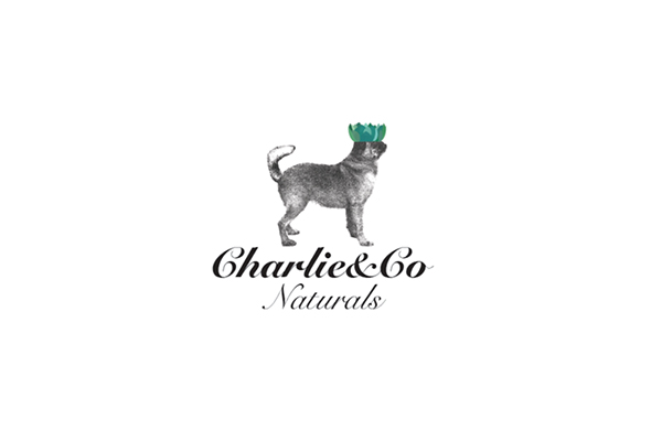 Charlie and co logo